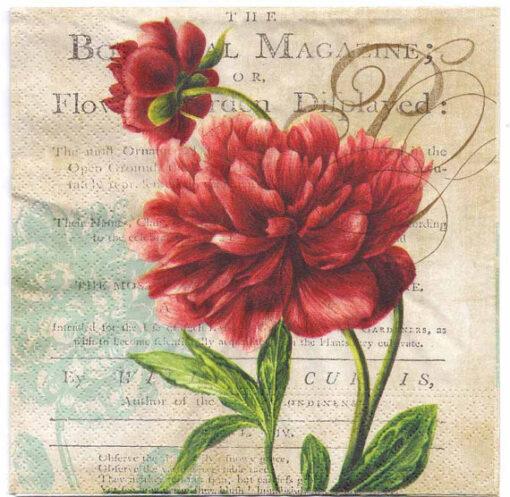 Servetel red rose