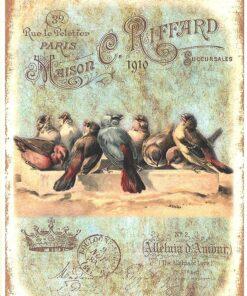 Hârtie de orez - păsări ciripind