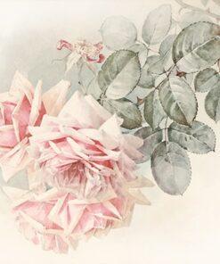 Șervețel summer roses – 33×33 cm