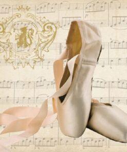 Servetel - Concerto Ballet - 33x33 cm