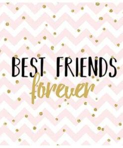 Servetel - Forever Friends - 33x33 cm