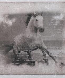 Hârtie de orez - wild horse - decoupage - PR2266