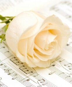 Șervețel – Classic Rose – 33×33 cm
