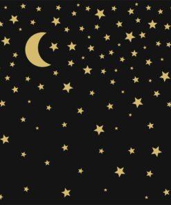 Șervețel Decoupage - Moonlight - 33x33 cm