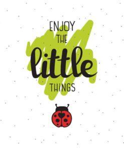 Șervețel Decoupage - Little Things - 33x33 cmȘervețel Decoupage - Little Things - 33x33 cm