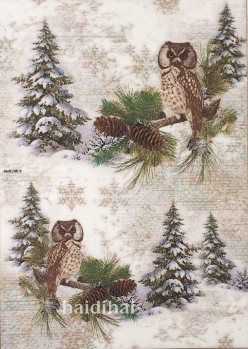 Hârtie de orez - Owl - A4 1