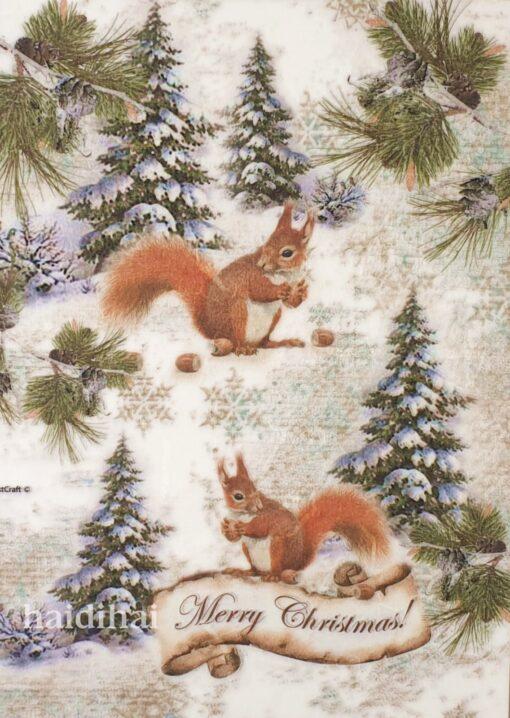 Hârtie de orez - Squirrel - A4 1